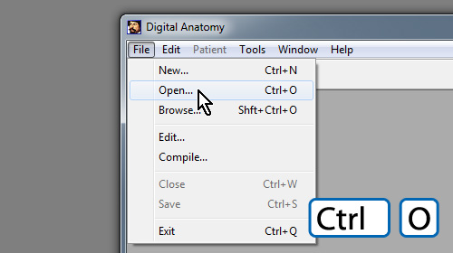 Digital Anatomy - DICOM Viewer